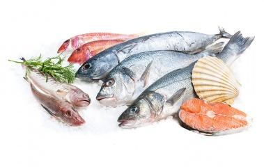 Verse en gebakken vis